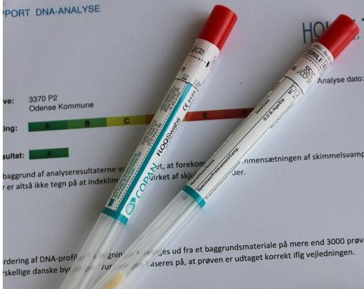 DNA Skimmeltest