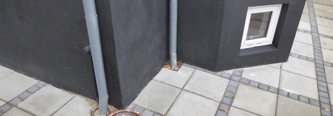 svampetest kælder