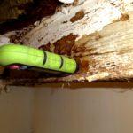 Fugtmåling i træloft (3)