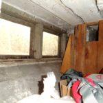 Skimmelsvamp på kældervæg (3)