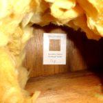 Skimmelsvamp på loftet (4)