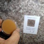 Test for skimmelsvamp i hus (3)
