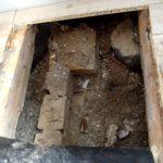 skimmelsvamp i gulv
