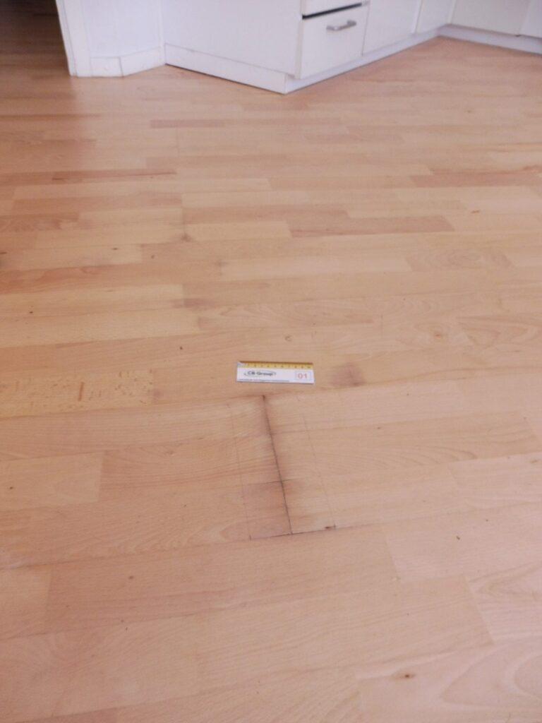 Skimmelsvamp-i-gulv-5